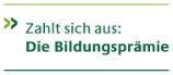 claim_zweilig_mit_linien